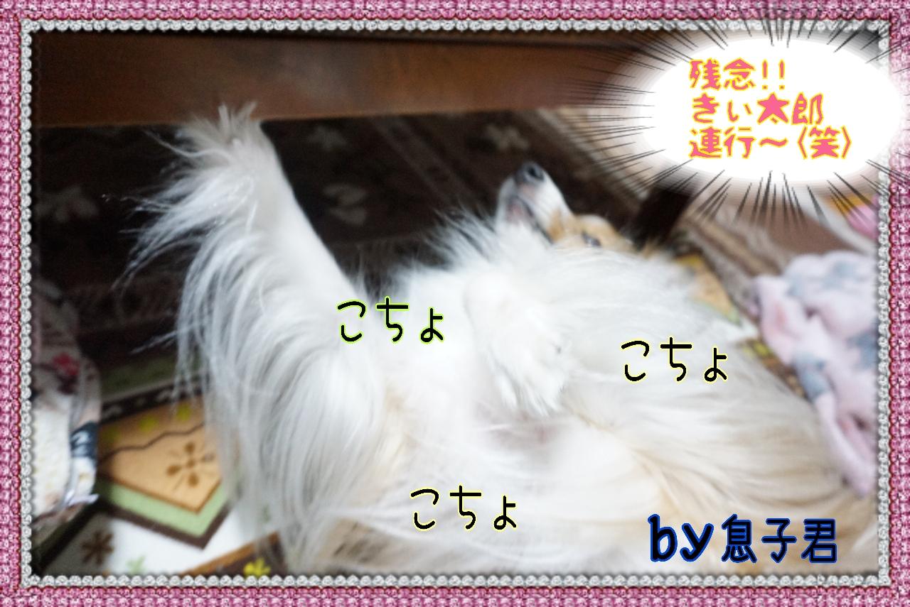 20141227011921_deco