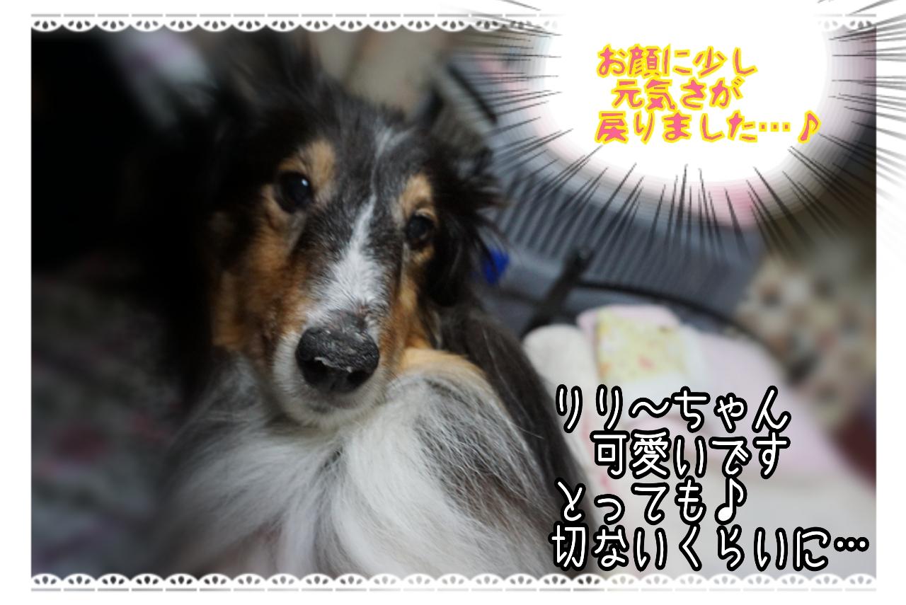 20150106003804_deco