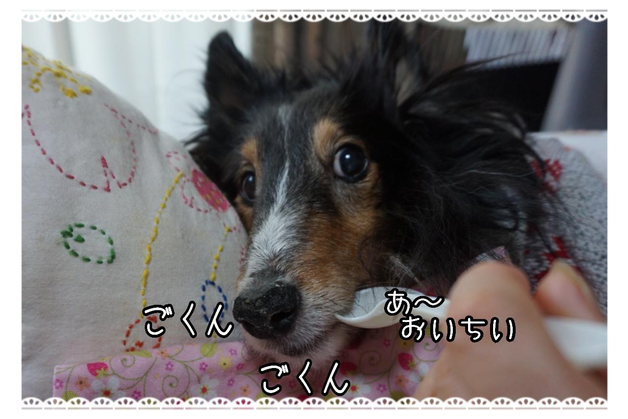 20150116170431_deco_2