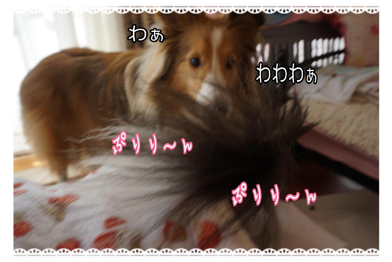 20150119162258_deco_2