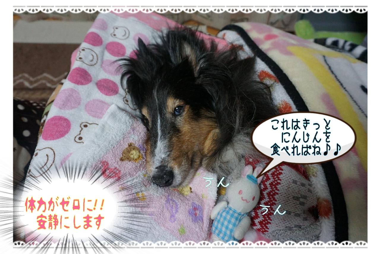 20150122130946_deco_2