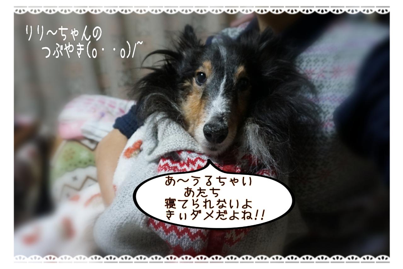 20150122140001_deco_2